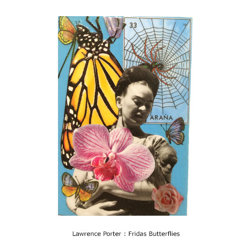 Lawrence Porter : Frida's Butterflies